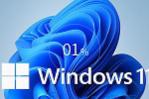 【Windows11】 64位专业版系统下载